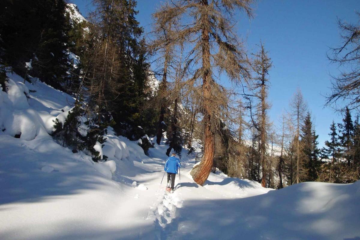 Vinschger-Oberland-Schneeschuhwanderung