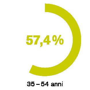 Il fascino (pericoloso) del web 2.0 – 57,4 % – 35-54 anni