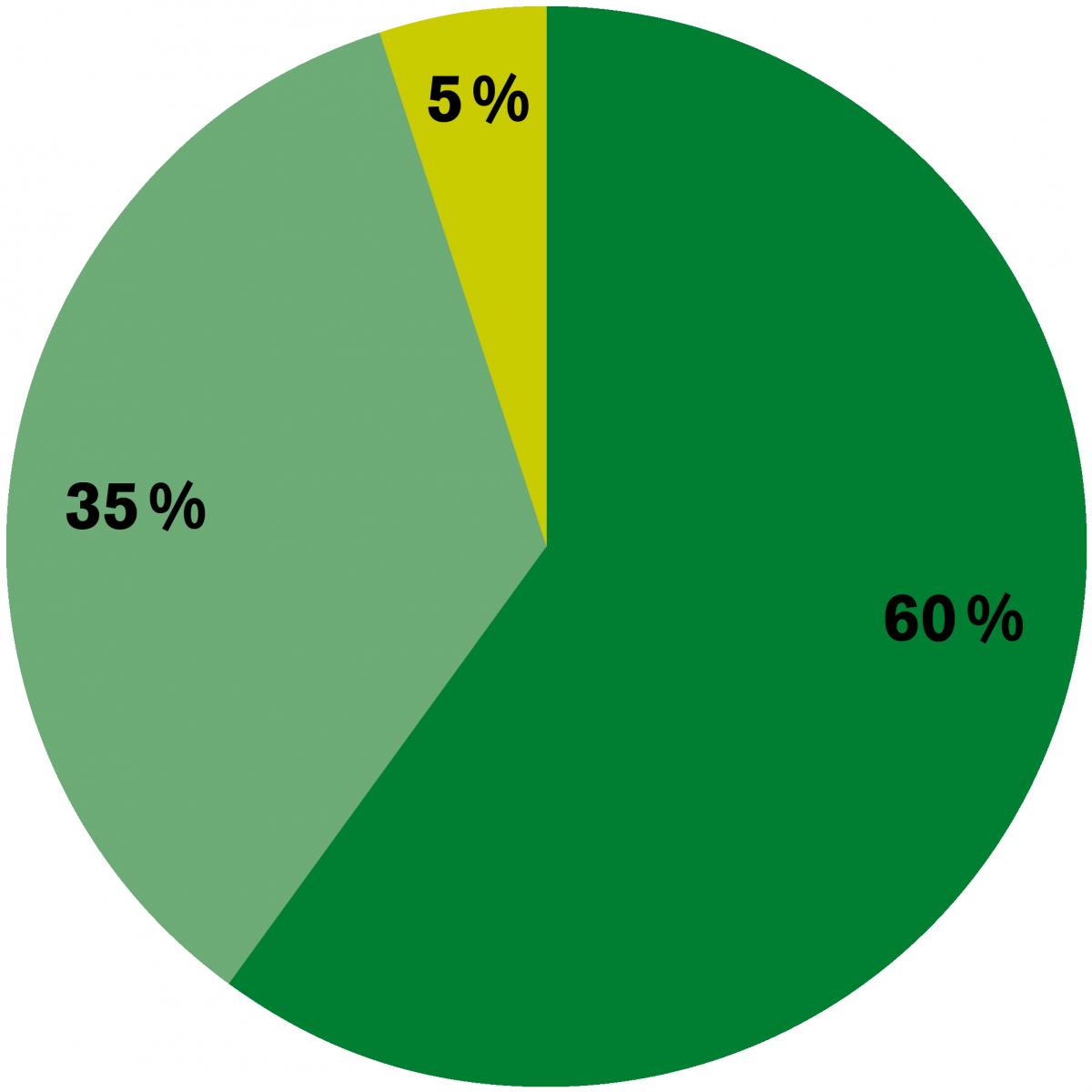 Raiffeisen Offener Pensionsfonds Grafik