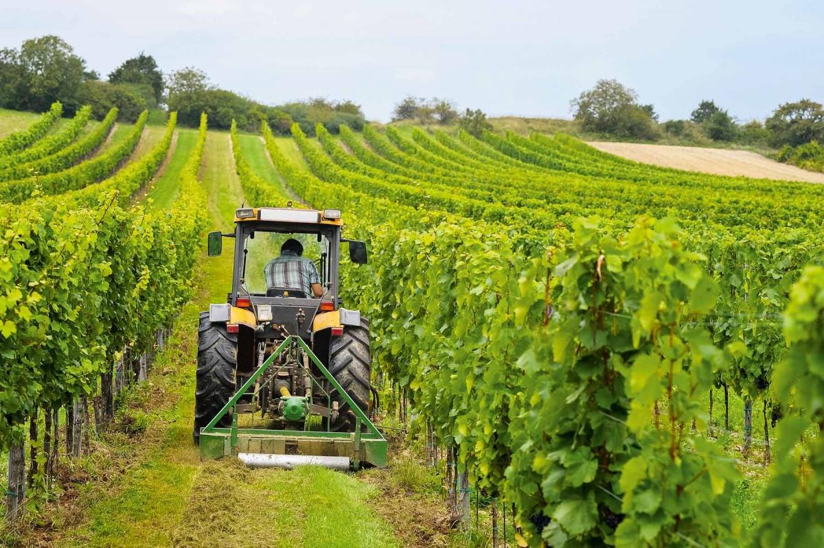 Landwirt mit dem Traktor auf dem Feld